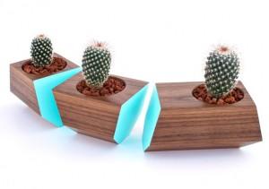 succulent-boxcar-planter-giveaway-0021